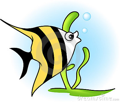 Angel Fish Stock Illustrations U2013 457-Angel Fish Stock Illustrations u2013 457 Angel Fish Stock Illustrations, Vectors u0026amp; Clipart - Dreamstime-8
