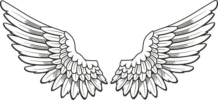Angel Wing Clip Art Free Vector Of Angel-Angel wing clip art free vector of angel wings tattoo free image-1