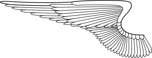 Angel wings clip art free vector in open office drawing svg svg 5