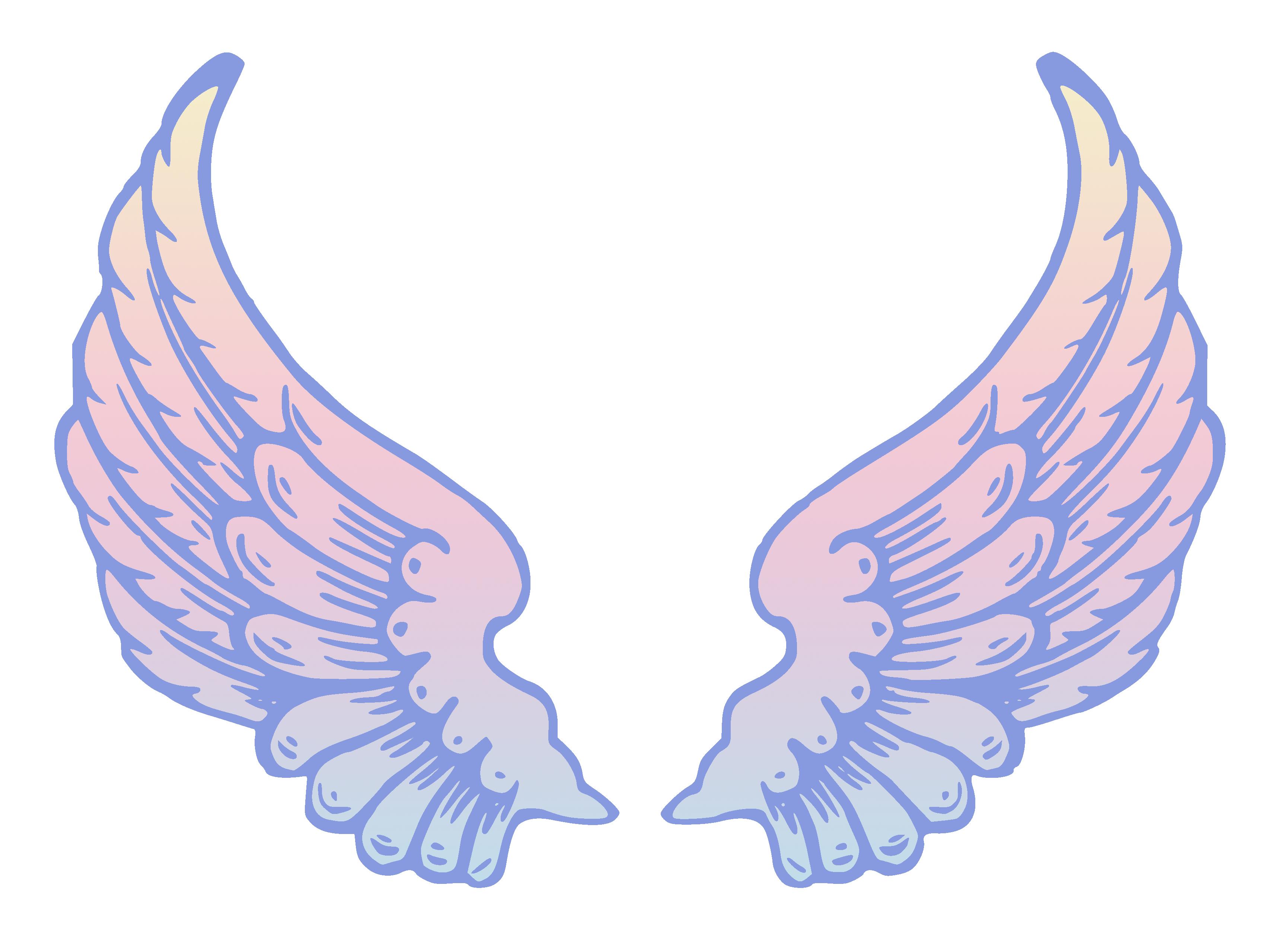 Angel wings clip art wing .