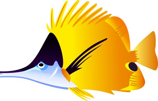 Angelfish Clipart-Angelfish Clipart-5