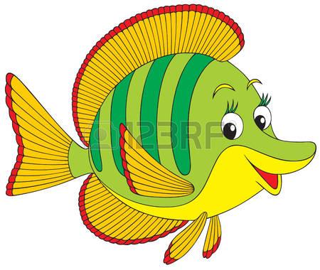 Angelfish: Coral Fish-angelfish: Coral fish-12