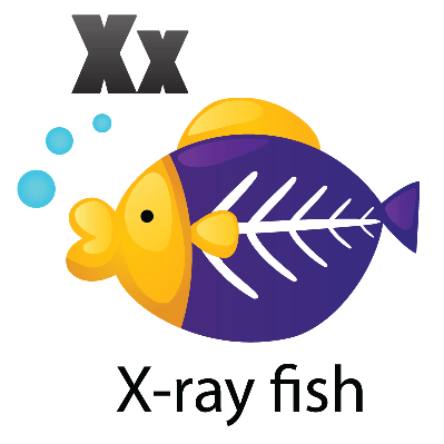 Animal Alphabet - X for X-Ray Fish | Clipart