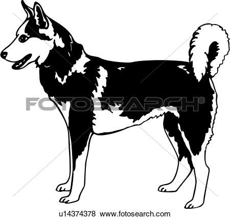 animal, breeds, canine, dog, show dog, s-animal, breeds, canine, dog, show dog, siberian husky,. ValueClips Clip Art-15