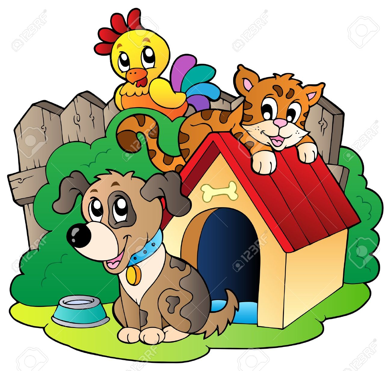 animal shelter: Three domestic .