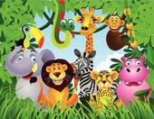 Animals-Animals-16