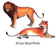 ... Animals Lion and a Lioness - Colored drawing on the paper.