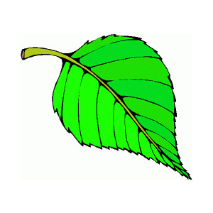 Animated Tree Leaves Clipart .-Animated Tree Leaves Clipart .-11