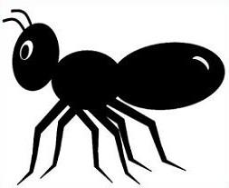 Ant Clipart - clipartall