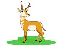 Antelope Standing On Green Grass Clipart-antelope standing on green grass clipart. Size: 41 Kb-10