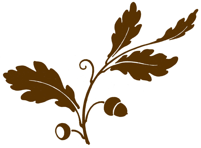 Antique Clip Art Oak Leaf Acorns Silhouette The Graphics Fairy