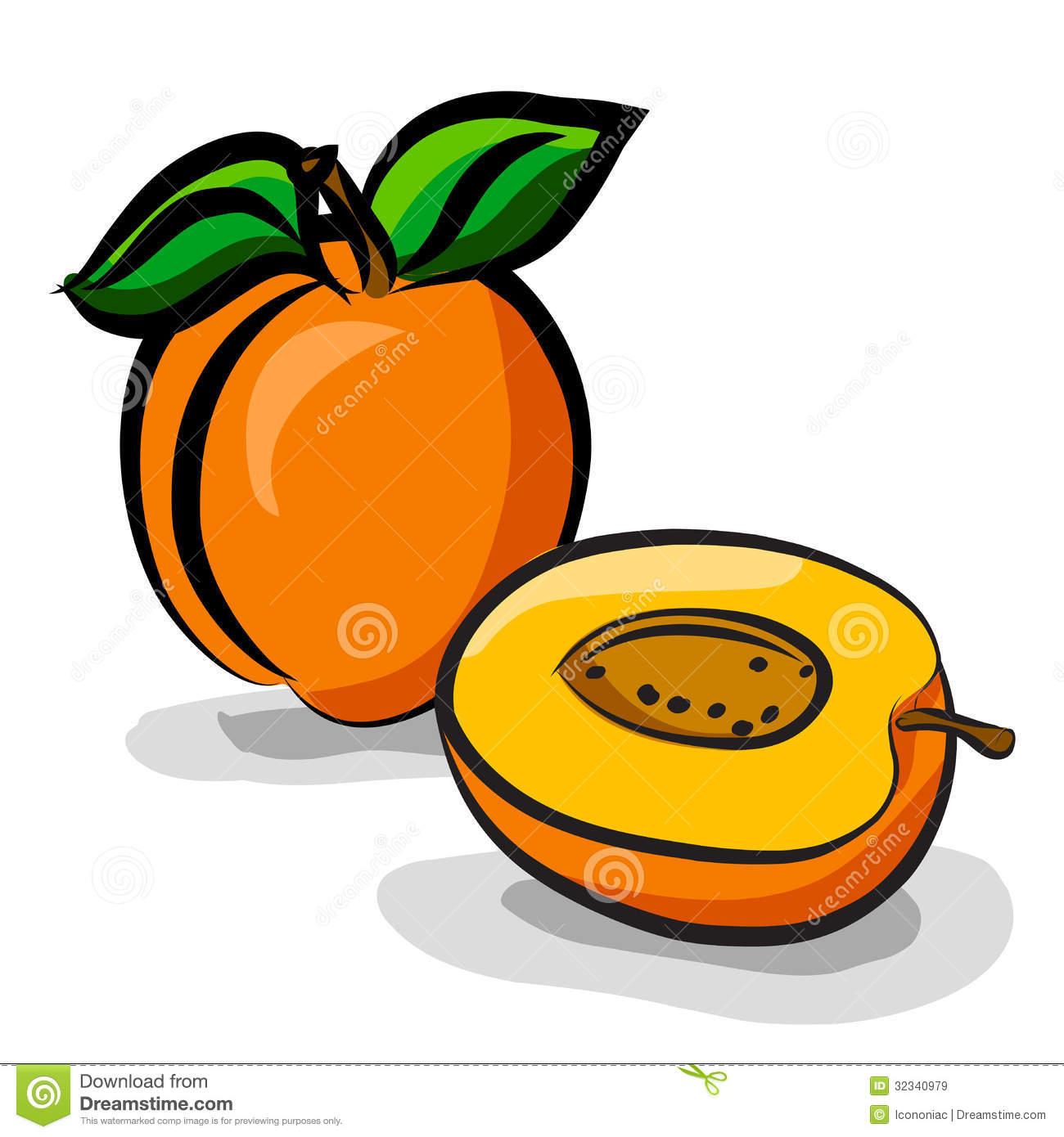 Apricot Bars Clipart #1-Apricot Bars Clipart #1-8