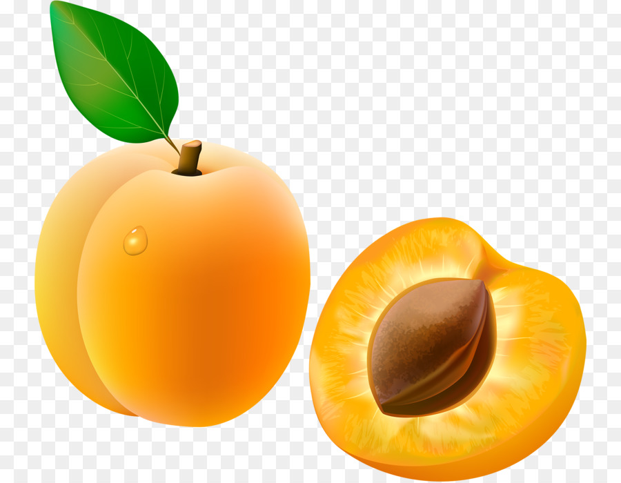 Apricot Fruit Clip art - Yellow apricot png download - 800*699 - Free  Transparent Apricot png Download.