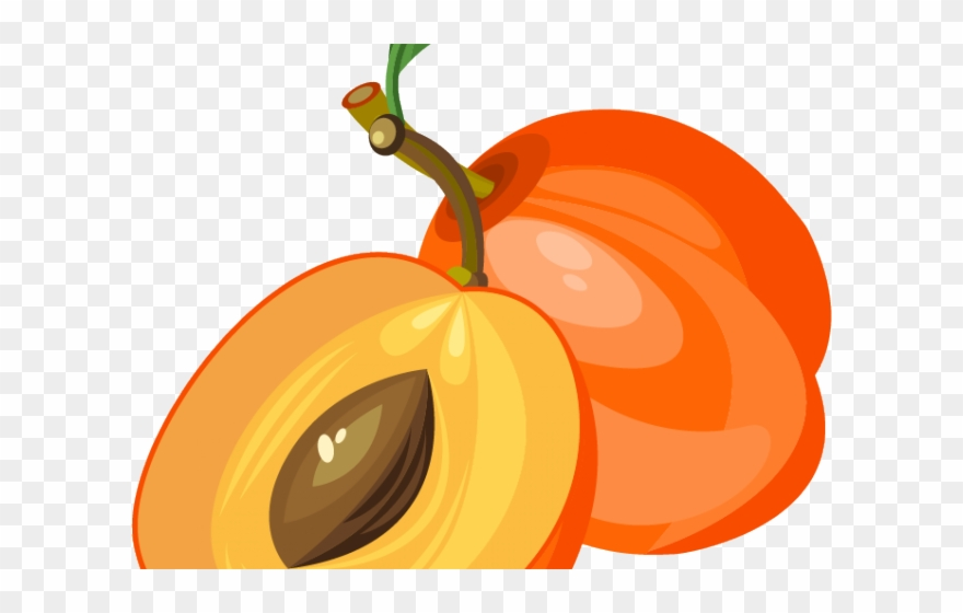 Peach Clipart Apricot - Png Download