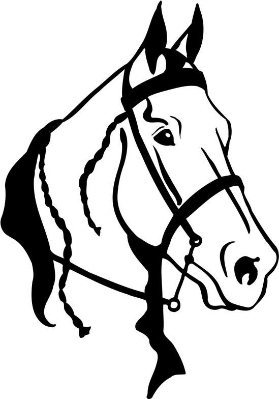 arabian horse head clipart