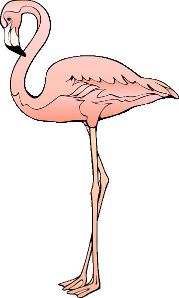 Clipart Flamingo