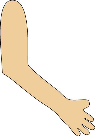 Arm Clip Art Image - transparent png arm and hand.