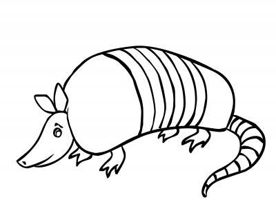 armadillo clipart