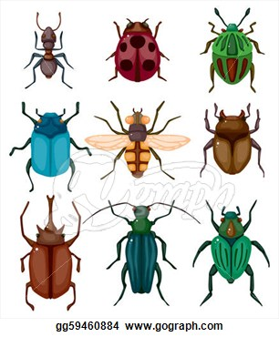 Insects Clip Art