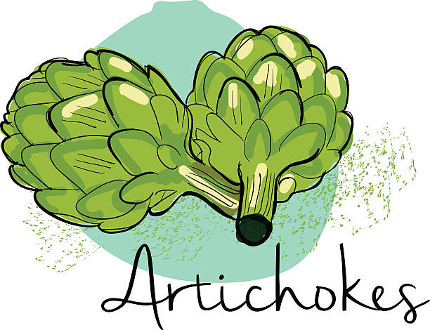 Artichoke Thistle Pictures Clip Art, Vec-Artichoke Thistle Pictures Clip Art, Vector Images u0026 Illustrations-11
