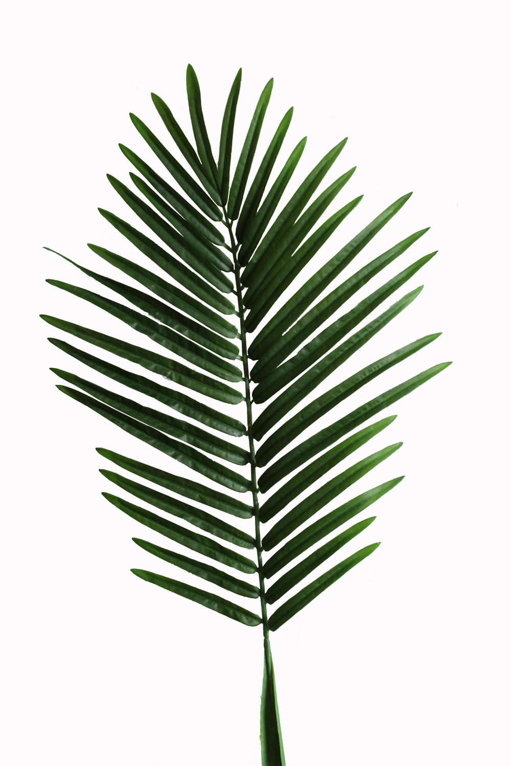 Artificial Leaf Palm Tree Palm Leaves Palm Spray Jtle 001 Jpg