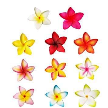 Assorted Plumeria Hair Clip - Plumeria Hair Clips For Girls- Hawaiian Flower  Hair Clips -