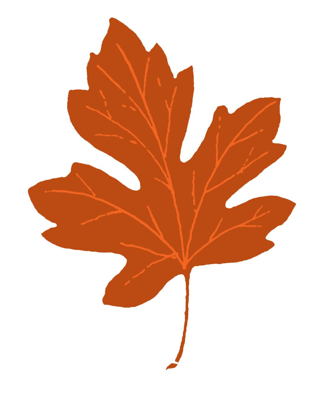 Vintage Fall Clip Art U2013 Maple Leaves-Vintage Fall Clip Art u2013 Maple Leaves-16