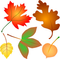 Autumn Leaves Clip Art Fall Foliage 4 Se-Autumn Leaves Clip Art Fall Foliage 4 Seasons Graphics-1