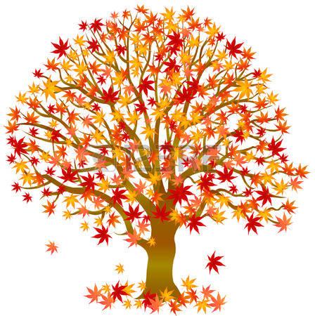 Autumn Tree: Autumn Leaves Maple Tree-autumn tree: Autumn leaves maple tree-2