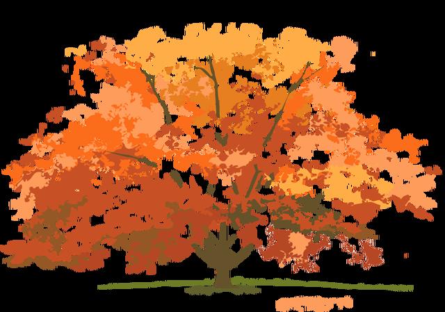 Autumn Tree Clipart Images .