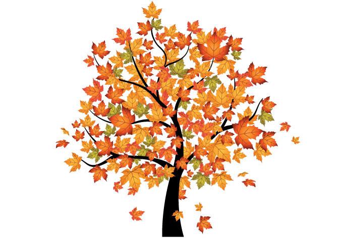 Autumn Tree Enhanced Clipart Cliparthut Free Clipart