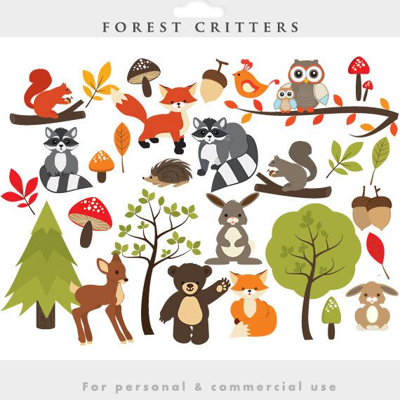 Ba9ad77a2d99bd123edc3ce31f73e - Forest Animals Clipart