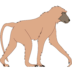 Baboon clipart, cliparts of Baboon free download (wmf, eps, emf, svg, png,  gif) formats