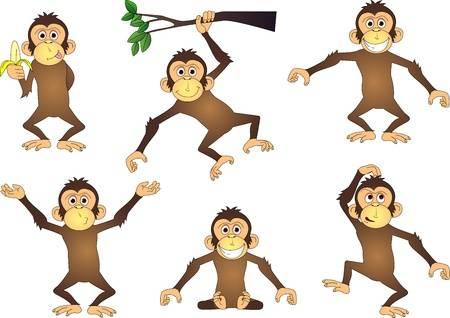 Funny Chimpanzee-Funny Chimpanzee-12