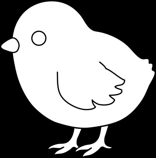 Baby Chick Coloring Page-Baby Chick Coloring Page-2