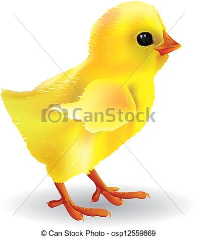 ... Baby Chick. Contains Transparent Obj-... Baby chick. Contains transparent objects. EPS10-3