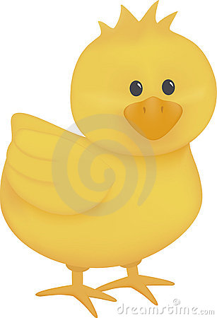 Baby Chick Stock Illustrations u2013 3,262 Baby Chick Stock Illustrations, Vectors u0026amp; Clipart - Dreamstime