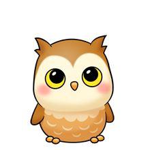 Baby Owl-baby owl-2