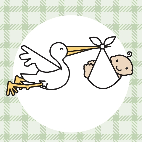 Baby stork clipart stork with baby clipart