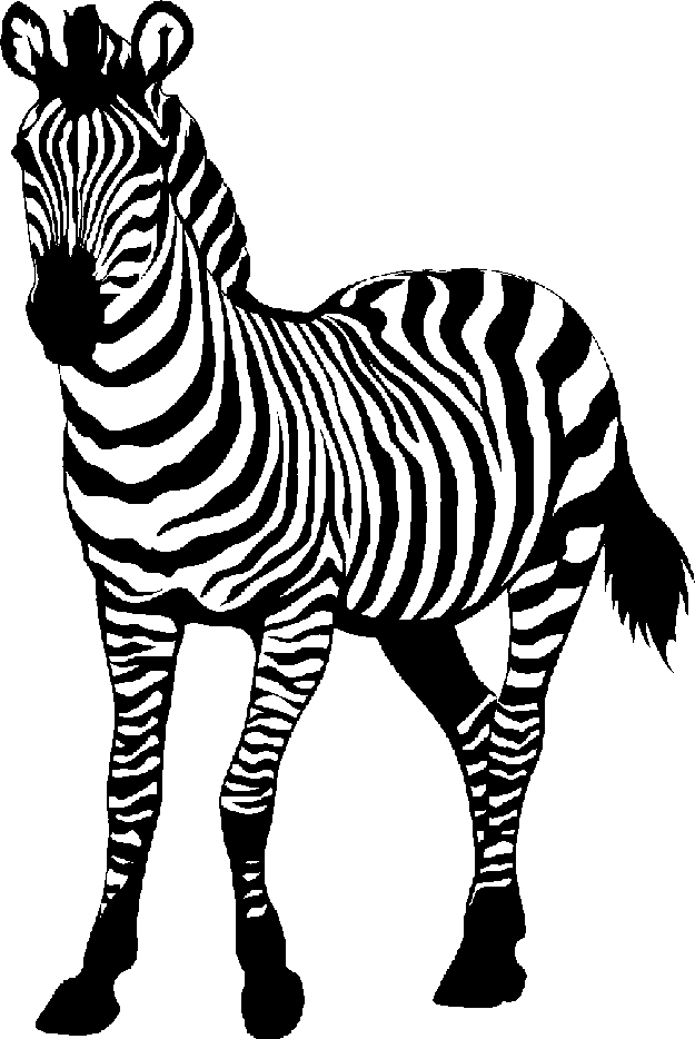 Baby Zebra Clipart