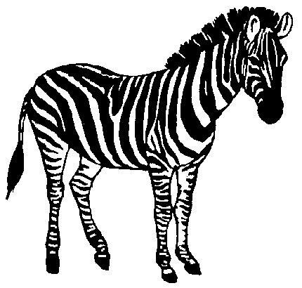 Baby Zebra Clipart. ZEBRA - Zebra Clip Art