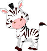 baby zebra; zebra crossing ...
