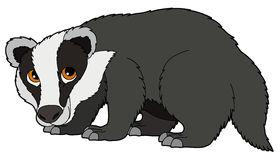 Badger Clipart -badger clipart -1