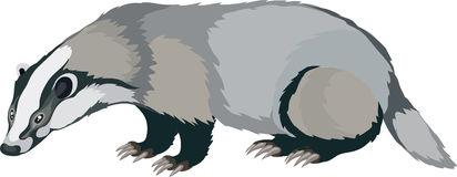 Badger Clipart -badger clipart -2