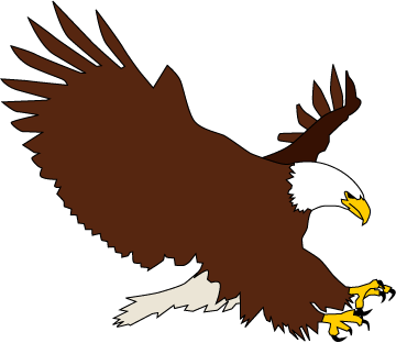 Bald eagle clip art related .
