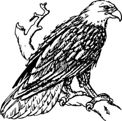 Bald Eagle clip art Vector clip art - Fr-Bald Eagle clip art Vector clip art - Free vector for free download-13