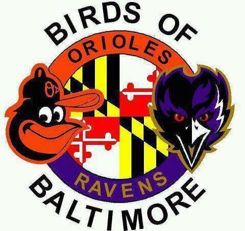 Ravens Baltimore SuperBowl, Baltimore Ra-Ravens Baltimore SuperBowl, Baltimore Ravens, Baltimore-19