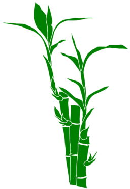 bamboo clipart-bamboo clipart-5