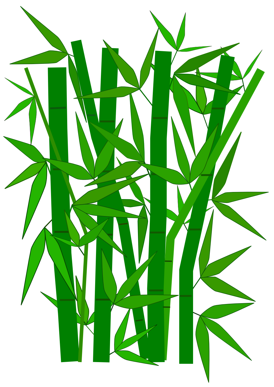 bamboo clipart-bamboo clipart-0