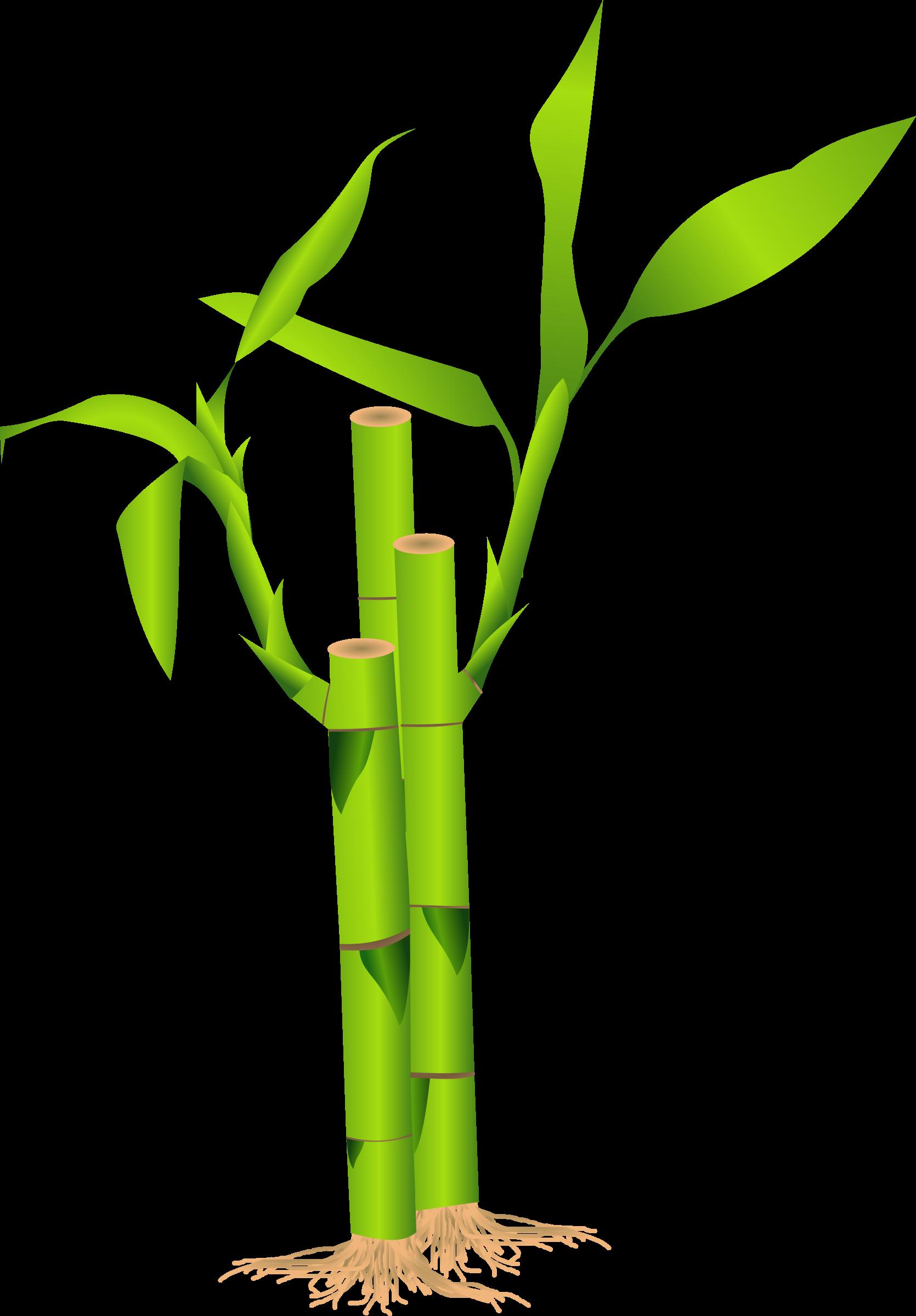 Bamboo Border Clip Art